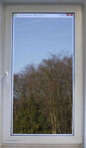 real window