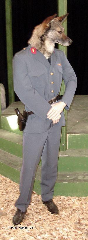ManinmalsPolicajt