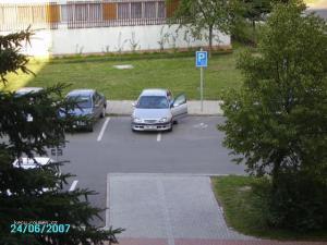 parkovani ala polovalida