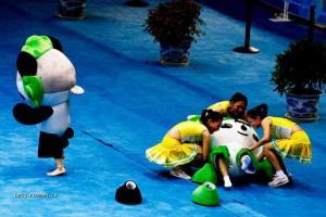 Olympiada Maskot upadl
