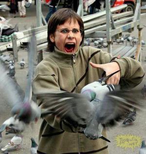 ptaci jako z filmu
