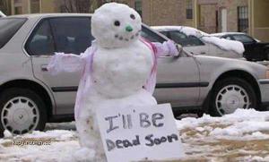 vesely snehulak