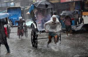 Picture of the day  India rain