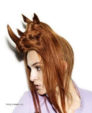 animals haircut 06