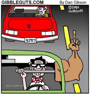 Today cartoon joke  Nerd Driving