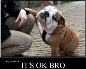 Its ok bro