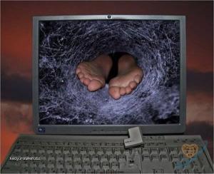 pohlcen internetem