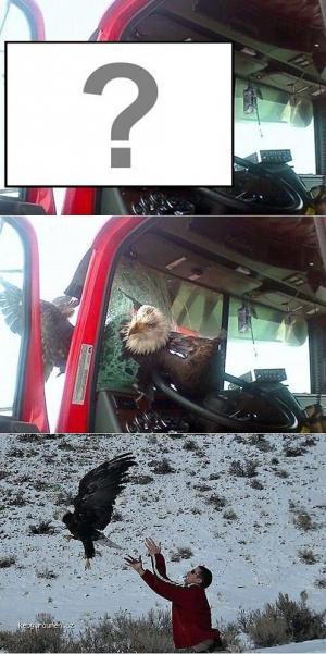 Orol vs Kamion