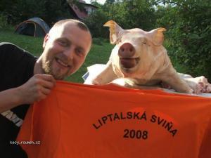 Liptalska svina 2008 02