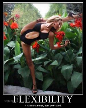 Flexibility 3