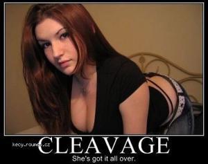 X Cleav