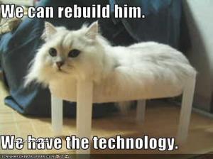 rebuild him