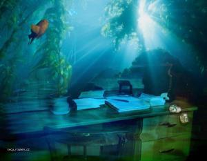 akvarium kancl