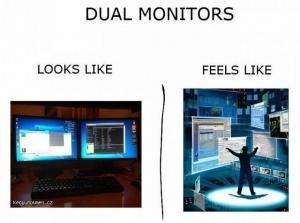 Duals monitors