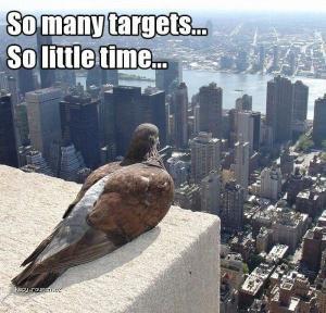 So many targets