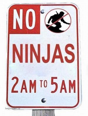 X No Ninjas
