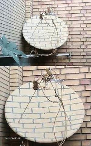camouflaged antenna