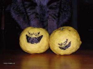 zle citrony