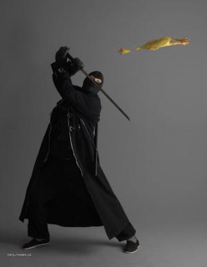 mistr ninja