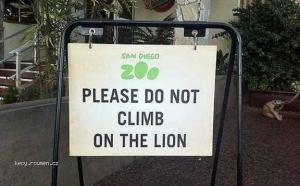 Do Not Climb On The Lion