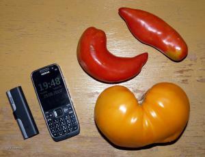 rajcata od jeta