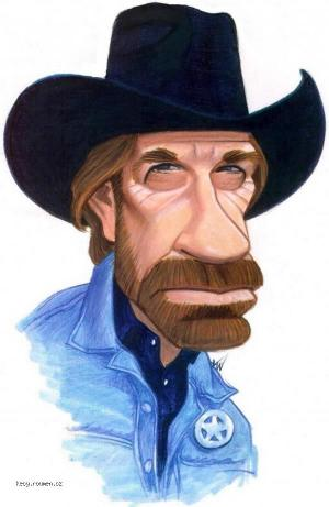 Chuck Norris can set ants on fire with a magnifying glass