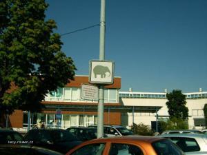 vyhrazeno pro slony
