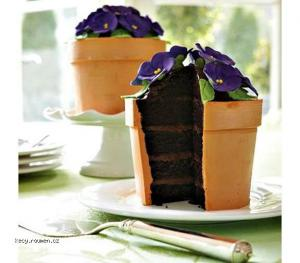 Cool Plantpot Themed Chocolate Cake