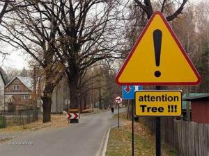 attention tree