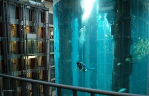 Hotel diver