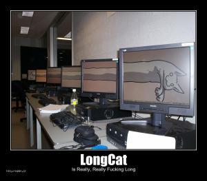 fucking long cat