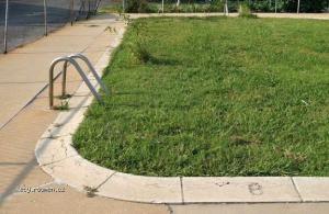 poolfullofgrass