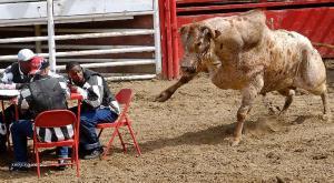rodeo nezvanejj host