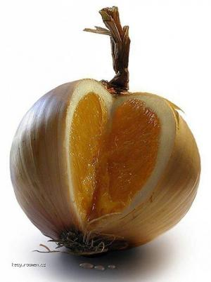 pomeranc nebo cibule
