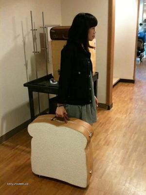 KThe Sandwich Suitcase