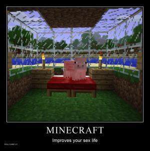 Minecraftimprovessexlife