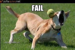 faildog