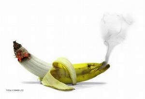 z bananu kurak