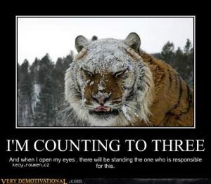 nasraty tiger
