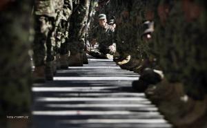 Foto tyzdna  Afganistan  Novacikovia americkej armady nastupeni na vycvik