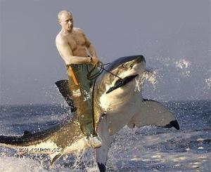Putin ve chvili volna