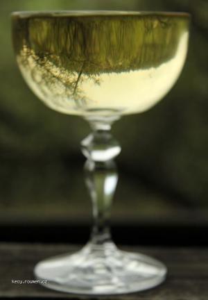 sklenice bileho vina