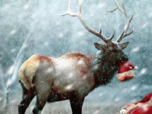 Santa skoncil spatne