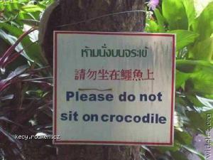 nesedat na krokodyla