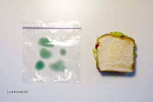 moldy bag 1