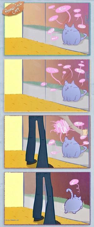 Annoying Cat