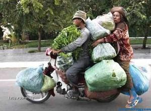 People carry the strangest things on motorcycles2