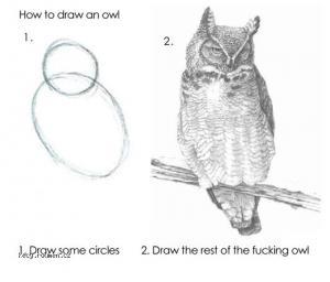 Drawing expert