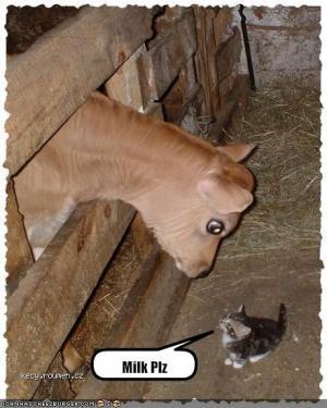 milk please