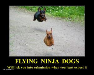 demotivational posters flying dogs